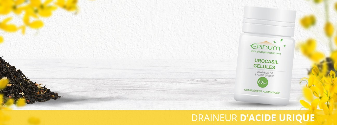 Urocasil : drainage efficace des reins